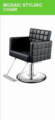 Salon Chairs and Styling Chairs for Sale