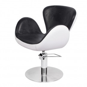 """SWAN"" European Salon Chair, Modern Salon Chair"